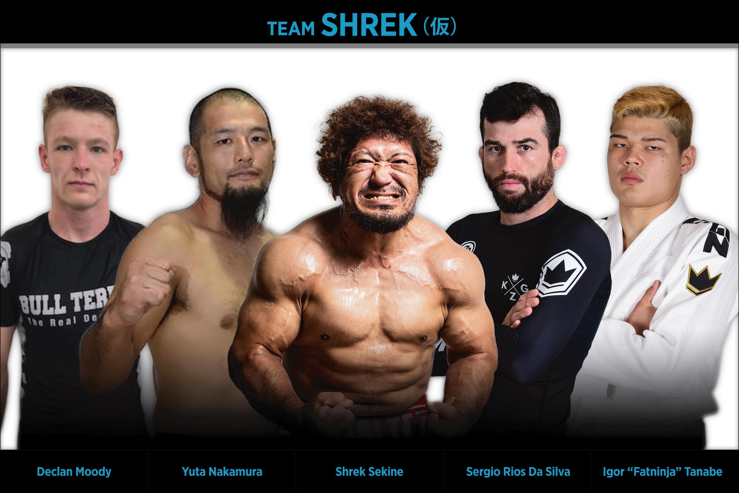TEAM SHREK(仮)